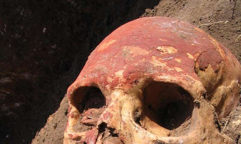 Plague in humans 'twice as old' but didn't begin as flea-borne, ancient DNA reveals