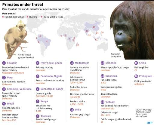 Primates under threat