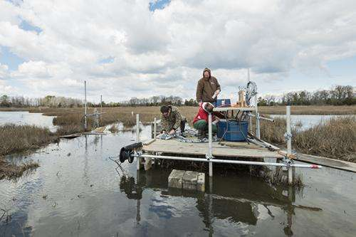 Professor uses thermal infrared imagery to remotely survey Delaware marshes