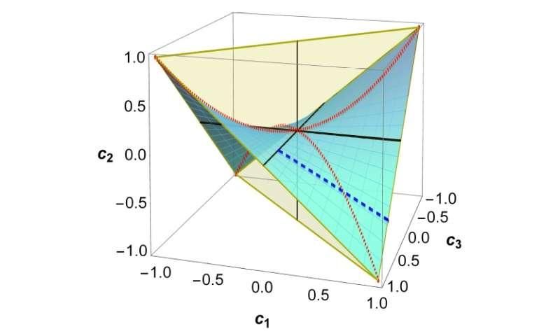 quantum correlation freezing