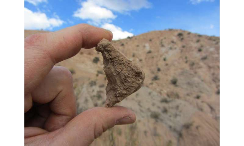 Reptile fossils offer clues about elevation history of Andes Mountains