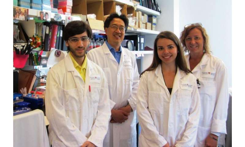 Research breakthrough in fight against muscle wasting diseases