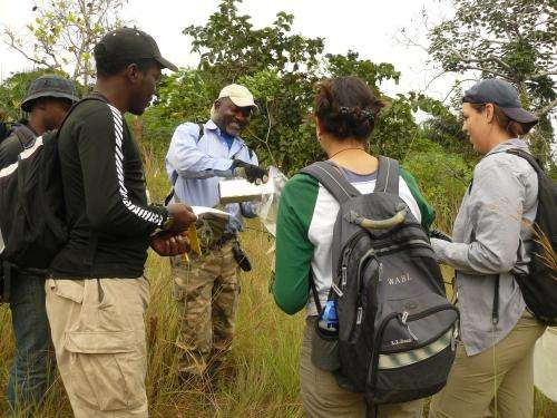 Scientists to use research and education to guide conservation in central Africa