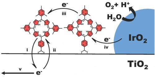 Selected electron transfer processes