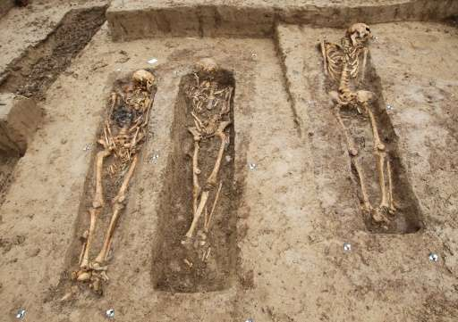 Skeletons of soldiers of the great army of Napoleon are uncovered after they were discovered at a building site in Frankfurt, we