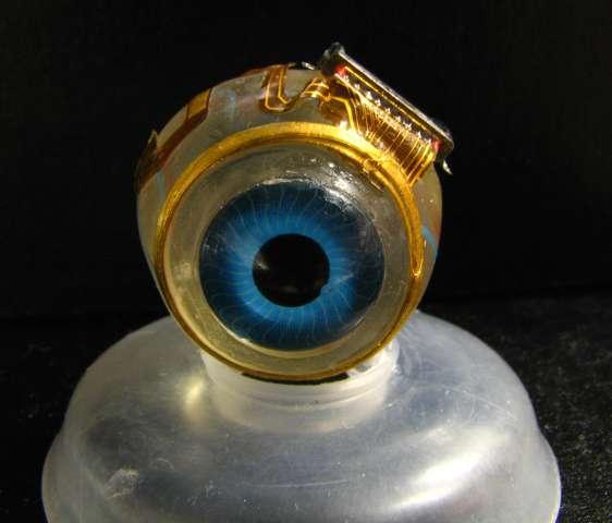 Smart microchips may optimise human vision