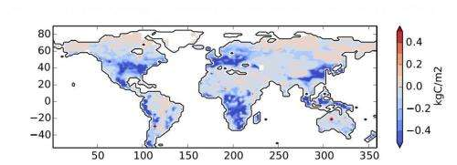 Soil's large carbon stores could be freed by increased CO2, plant growth