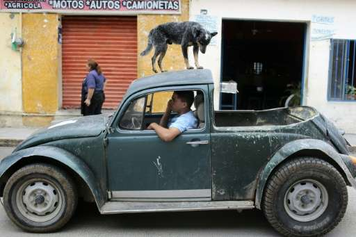 Some old Beetles can still be found on Mexican streets, such as this modified model in Buenavista de Cuellar, Guerrero State, in