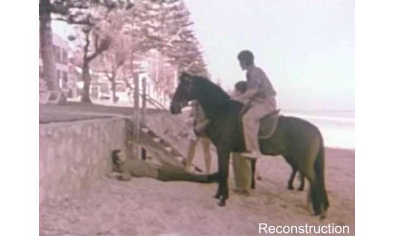 somerton man horses