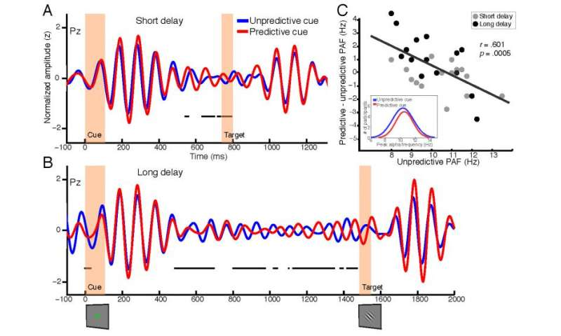 Spatial and frequency specificity of the alpha-band signal