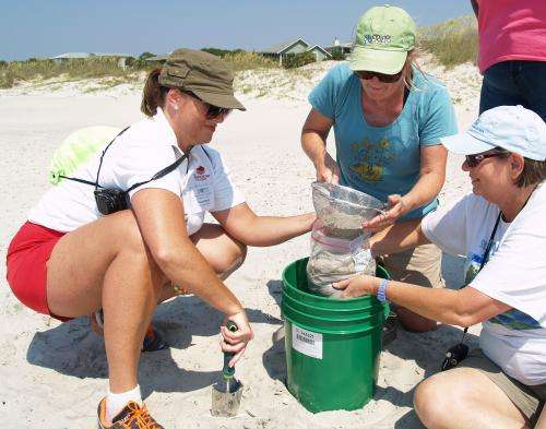 Study finds high marine debris, need for standardized reporting along Georgia coast