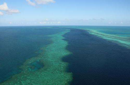 The 35-year plan for the Great Barrier Reef includes a complete and permanent ban on the dumping of capital dredge material in t