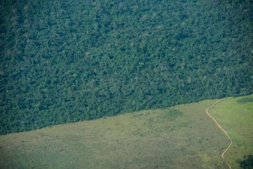 The deforestation area stops at the border of Indio's reservation area in Para state, northern Brazil, on August 9, 2013