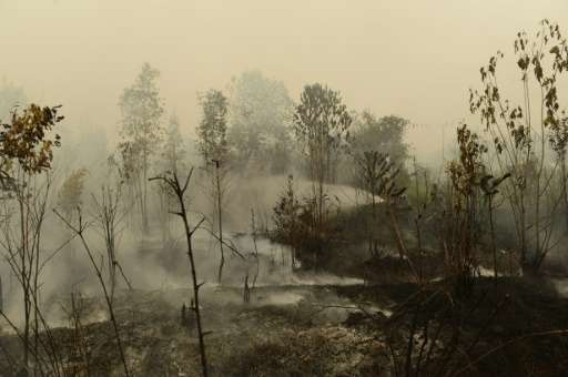 The haze situation has been made worse this year by an El Nino weather system, which produces tinder-dry conditions in Indonesia
