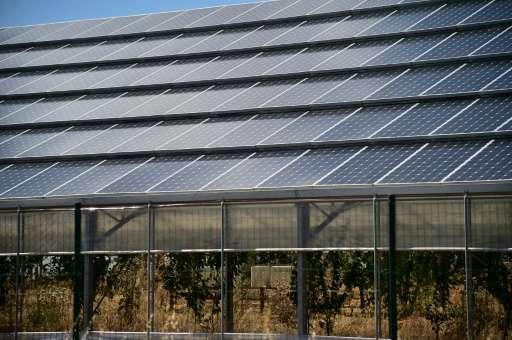 The solar plant of Narbolia near Oristano in Sardinia