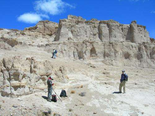 Tiny plant fossils a window into Earth's landscape millions of years ago