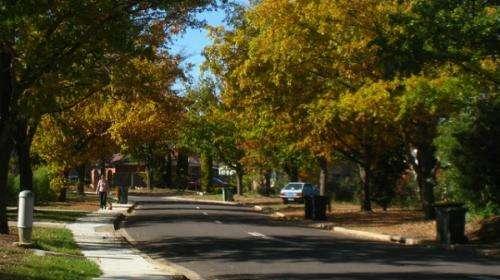 Transport trends depend on walkability to neighbourhood destinations