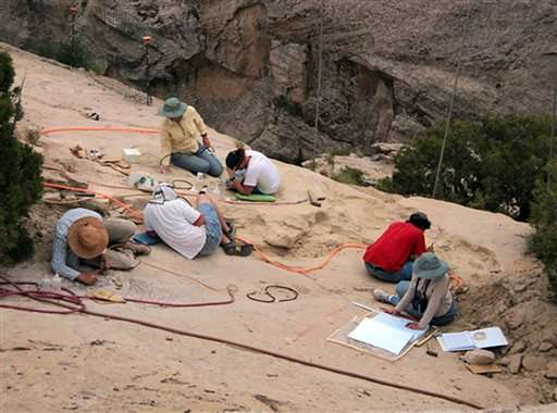 Treasure trove of late Triassic fossils discovered in Utah