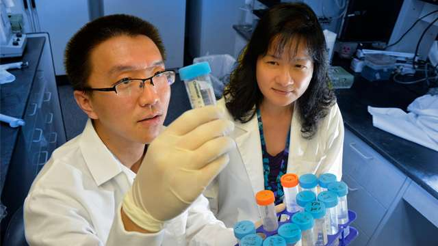 Two proteins work together to help cells eliminate trash and Parkinson's may result