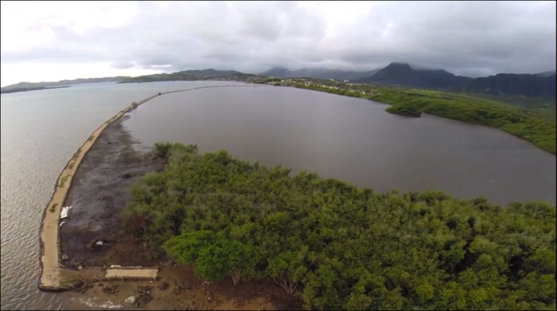 Undergraduates make discoveries in Hawaiʻi –from mountain to sea