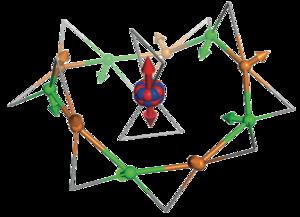 Unusual novel states in a single-crystal gadolinium gallium garnet