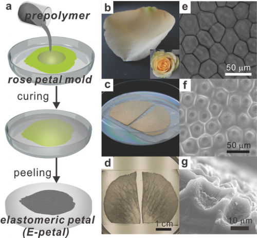 Using E-petals for making stretchable metal conductors