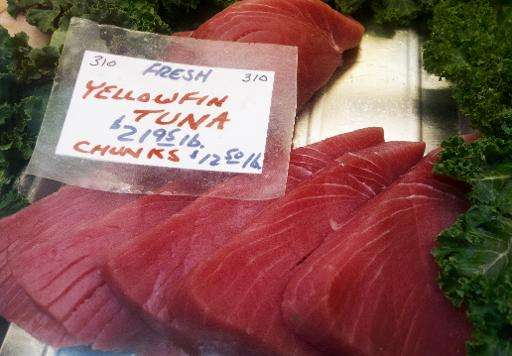 """US requirements on """"dolphin safe"""" tuna labelling still discriminate against Mexican-caught tuna, according to a World"""