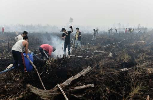 Volunteers help extinguish a peatland fire in the outskirts of Palangkaraya, a city of 240,000 in Indonesia's central Kalimantan