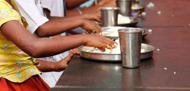 Wasting of Indian children during the recession 'linked to food price spikes'
