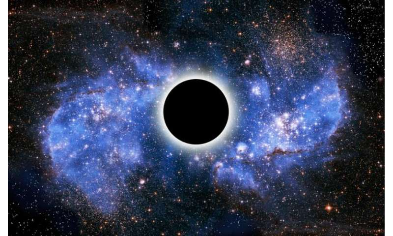 What is the black hole information paradox?