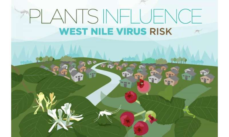 What's in your landscape? Plants can alter West Nile virus risk