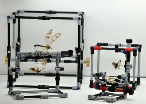 When scientists play with LEGO: A new creative version of pinned insect manipulator