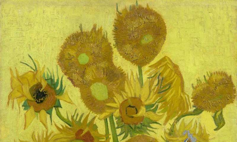 Why Van Goghs Sunflowers Are Wilting