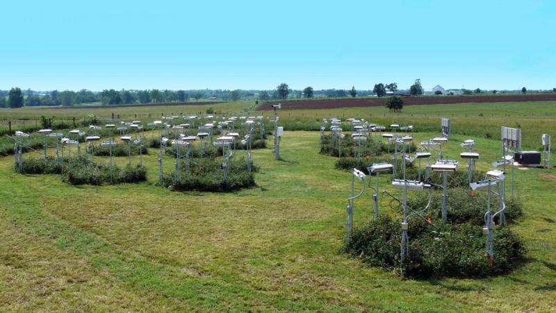 Will grassland soil weather a change?