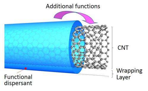 Wrapping carbon nanotubes in polymers enhances their performance