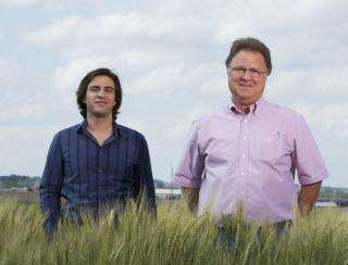 Yield gap study highlights potential for higher crop yields in Africa