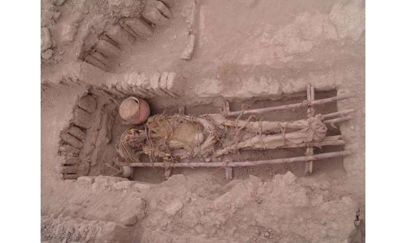 Ancient DNA shows European wipe-out of early Americans