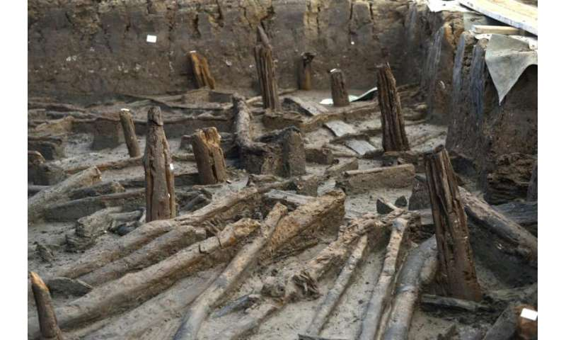 Bronze Age stilt houses unearthed in East Anglian Fens