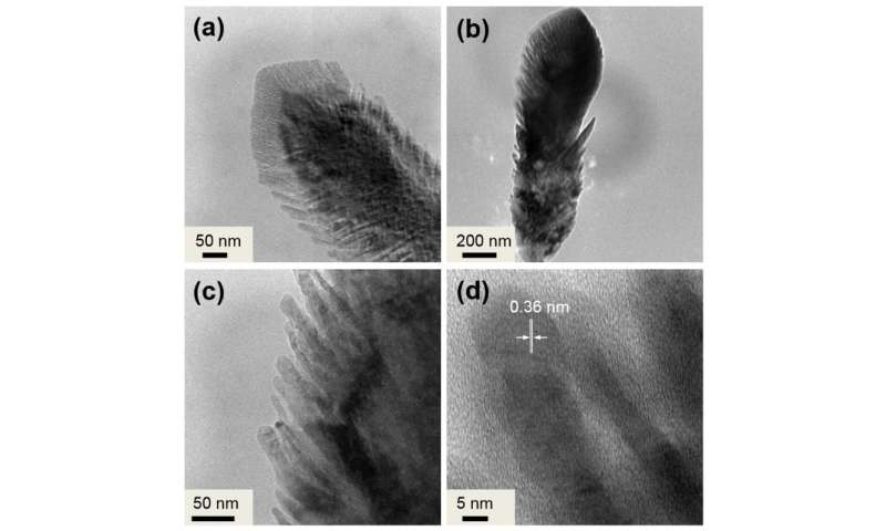 Core-shell nanostructures show promise in production of fuel gases