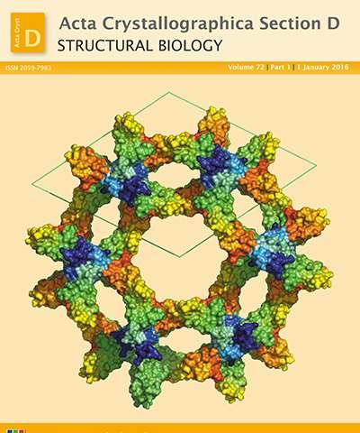 Digital enhancement of cryoEM photographs of protein nanocrystals