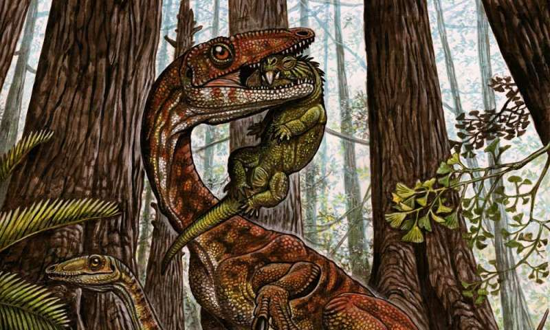 Dinosaurs' rise was 'more gradual,' new fossil evidence suggests