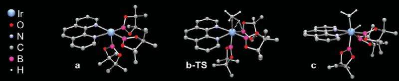 Efficient methane C-H bond activation achieved for the first time