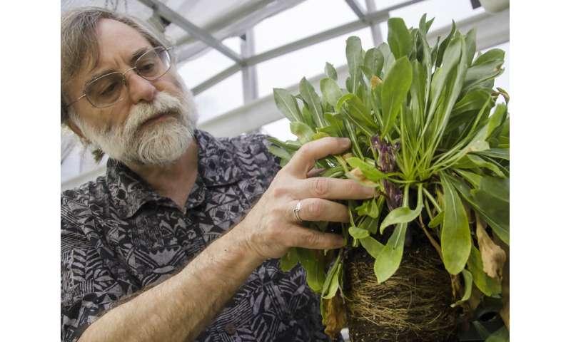 Genetic studies toward plants that resist parasitic weeds