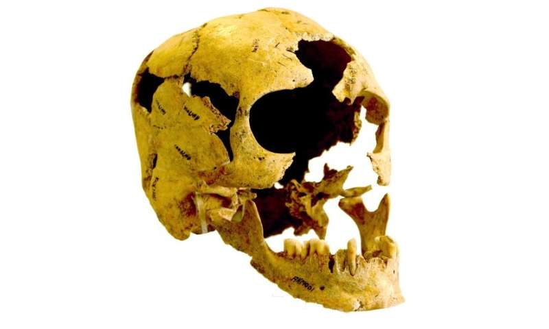 Genomes from Zagros mountains reveal different Neolithic ancestry of Europeans & South Asians