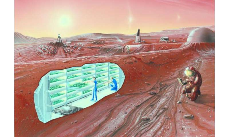 How bad is the radiation on Mars?