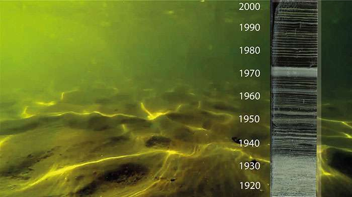 Human activities trigger hypoxia in freshwaters around the globe