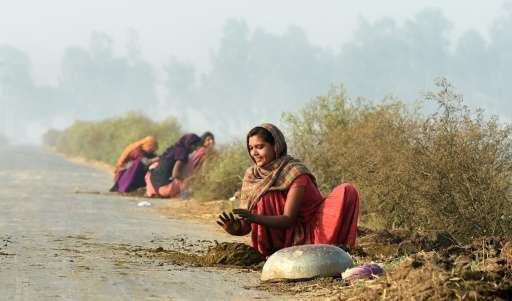 Indian women make cow dung patties alongside fields at Karnal, some 140 km north of New Delhi