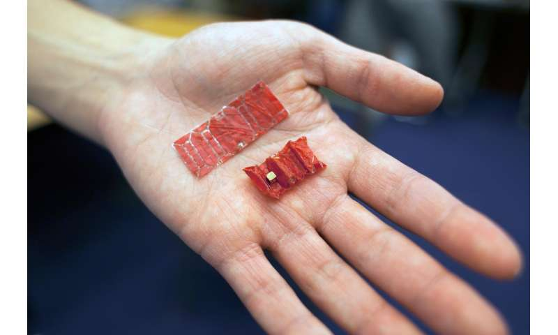 Ingestible robot operates in simulated stomach