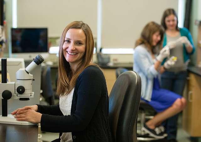 MDI Biological Laboratory scientist identifies mechanism underlying peripheral neuropathy