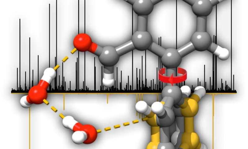 Molecules change shape when wet